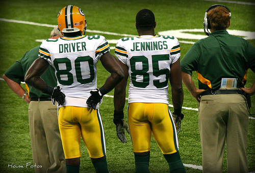 NFL Free Agents 2013 — NFC North
